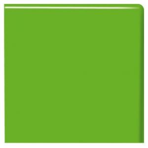 Kromy Vert