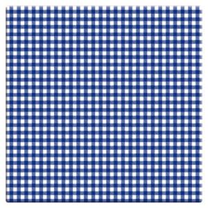 Vichy Bleu
