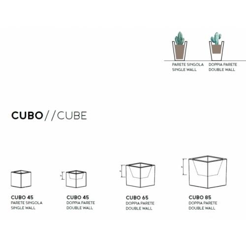 Fenice Cube