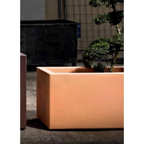 Fenice Short Box