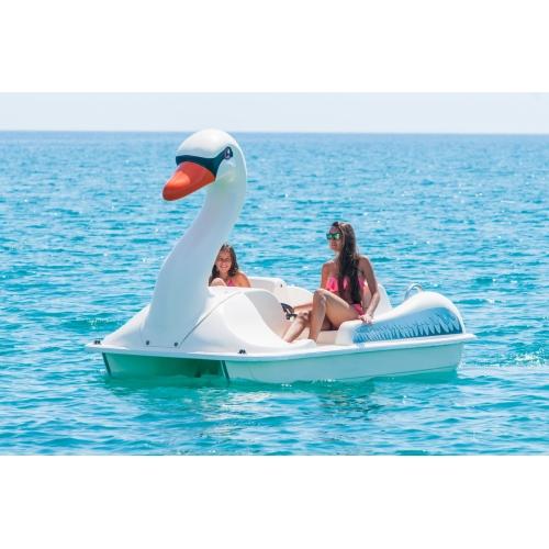 Sunny Swan
